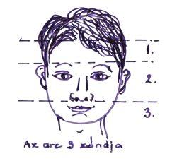Az arc 3 zónája
