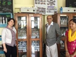 India-homeo-gyogyszerek