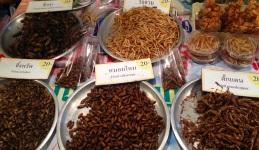 Pirított rovarok egy thai piacon